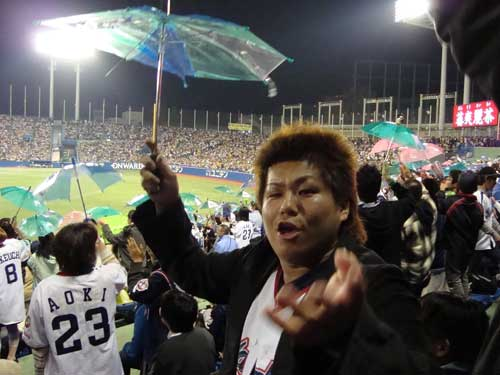 Swallows fan